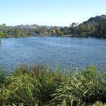 Laguna Niguel Homes for Sale under $1,000,000